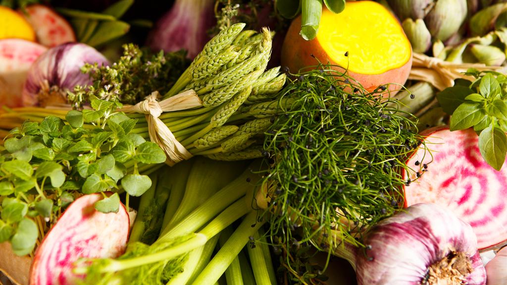 Cursos y talleres de cocina cocina vegetariana - Curso de cocina vegetariana ...