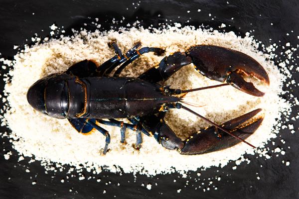 Блюдо из слоеного теста и фарша в духовке с фото